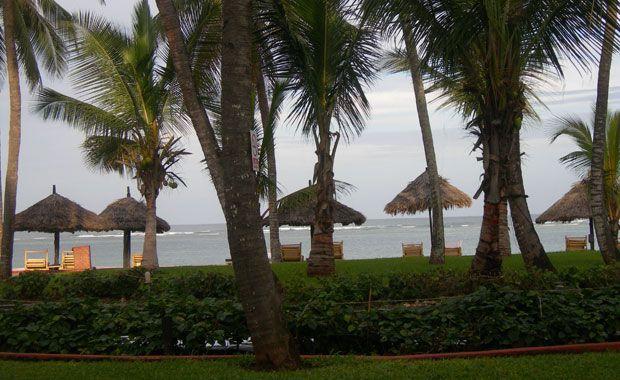 Playa de Diani. Foto de: PALOMA GIL