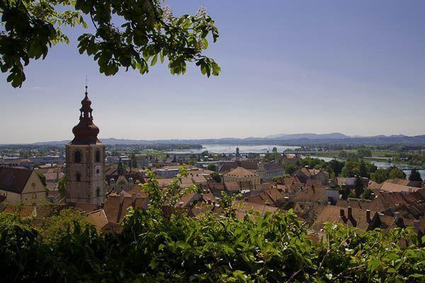 Panoramica desde el castillo de Ptuj - foto de ALBERTO PERAL