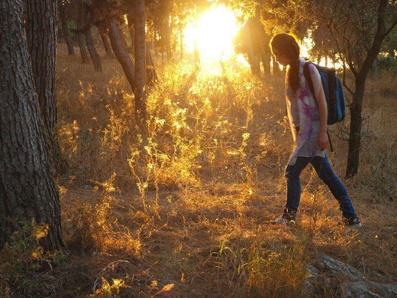 caminando-Gospel-Trail-Glic