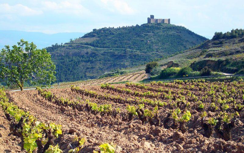 Castillo de Davalillo en La Rioja | Foto: David Fernández