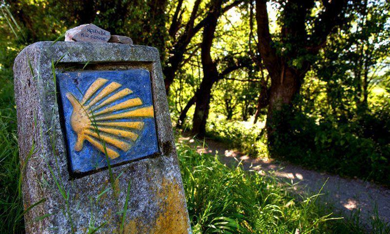 Hito que indica por dónde discurre el Camino de Santiago | Foto: Turgalicia