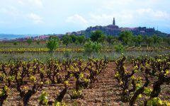 Lagares rupestres en La Rioja