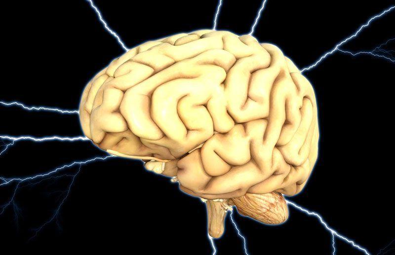 Recreación de un cerebro | Foto: HypnoArt para Pixabay