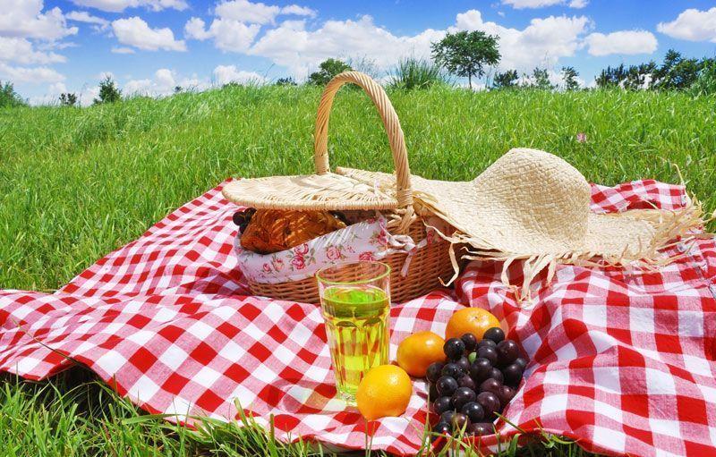 El picnic, otra actividad complementaria al turismo