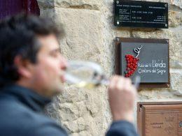 Ruta del Vino de Lleida en las Bodegas Tomás Cusiné, en Castell del Remei (Pla d'Urgell) | Foto: De Foto