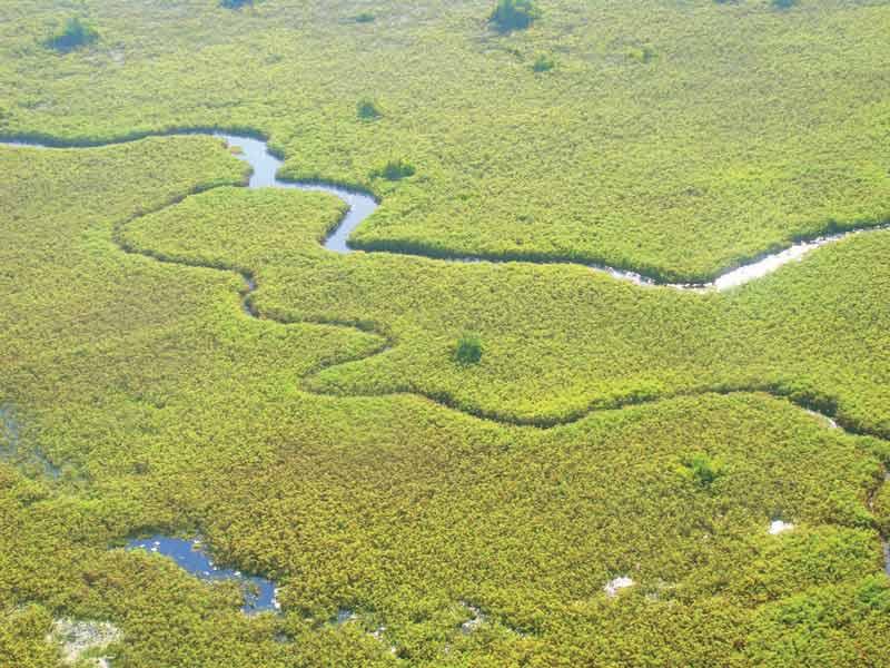 Imagen aérea del Delta del Okawango (Botswana)   Foto: Gertrude M. Matswiri, Channel