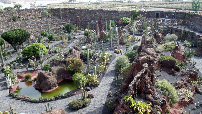 Vista del Jardín de Cactus | Foto: David Fernández