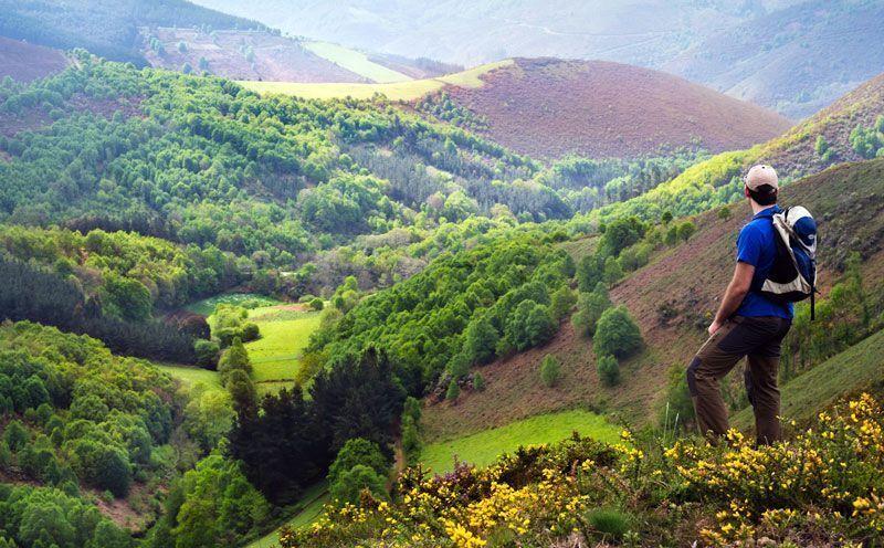 Camino de Santiago primitivo a su paso por A Fonsagra | Foto: Turgalicia
