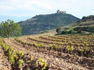 Qué ver en La Rioja en tres días