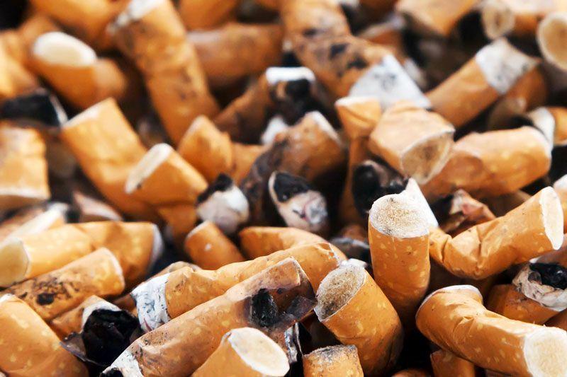 Montón de colillas de cigarrillos | Foto: PublicDomainPictures para Pixabay