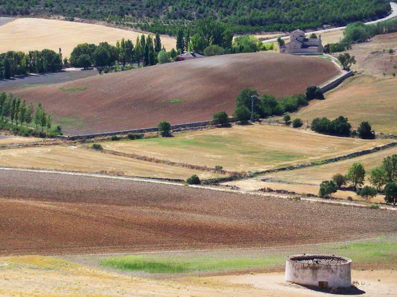 Desde la muralla de Urueña se controlan los campos circundantes, con la ermita de la Anunciada y un palomar | Foto: David Fernández