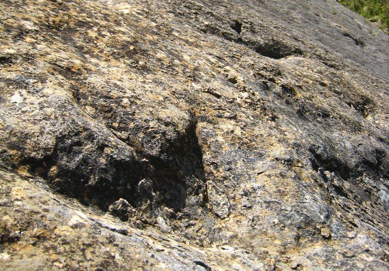 Huellas de dinosaurio en el yacimiento de El Villar-Poyales de Enciso (La Rioja)   Foto: Beatriz de Lucas Luengo