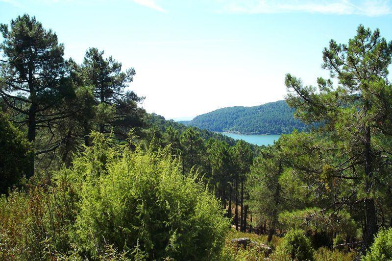 Vista del embalse de La Jarosa, cerca de la zona de Los Pinares Llanos | Foto: David Fernández