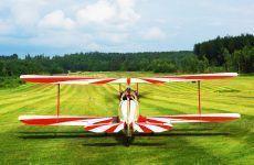 Reseña de 'Muerte de un aviador', de C. J. Sprigg