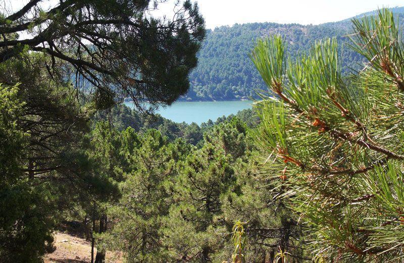 Vista del embalse de la Jarosa desde la Senda del Agua | Foto: David Fernández