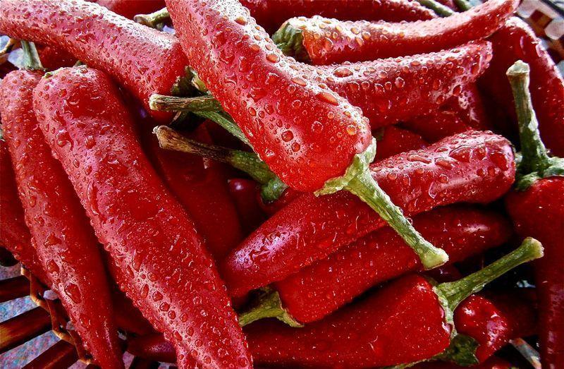 Pimientos, una de las mejores verduras que cocinar   Foto: Pixabay