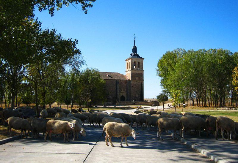 Iglesia de Paradinas | Foto: Beatriz de Lucas Luengo