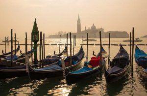 Sin cisnes en Venecia